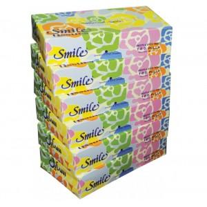 SMILE TISSUES 6 X 100'S
